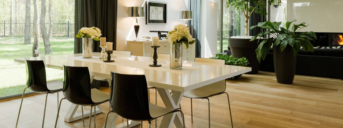 Plant living room ideas