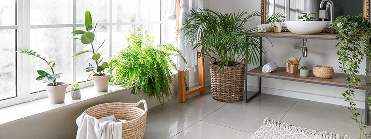 Sustainable eco friendly bathroom